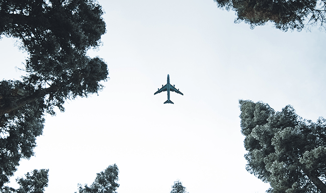 Sustainability: How is the aviation industry adapting?